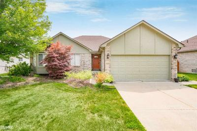 Chesterfield  Single Family Home For Sale: 28702 Yorkshire Dr