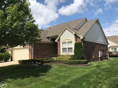 Macomb Condo/Townhouse For Sale: 20771 Sleepy Hollow