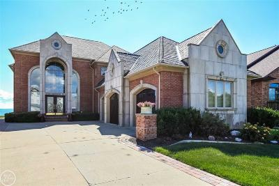 Macomb Single Family Home For Sale: 37560 Lakeshore Dr.