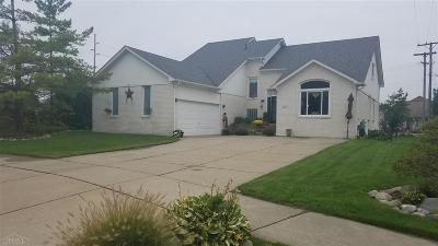 Macomb Single Family Home For Sale: 51011 Pinewood