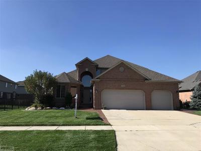 Macomb MI Single Family Home For Sale: $380,000