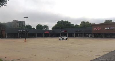 Clinton Township Commercial Lease For Lease: 41964-42012 Hayes