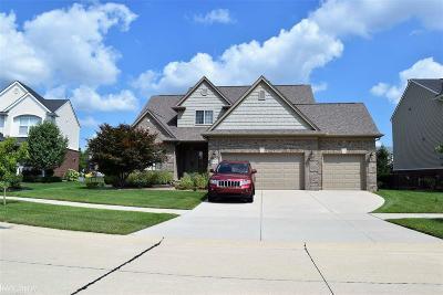 Macomb MI Single Family Home For Sale: $354,999