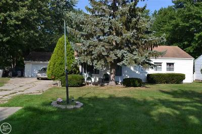 Clinton Township Single Family Home For Sale: 21485 Drexel