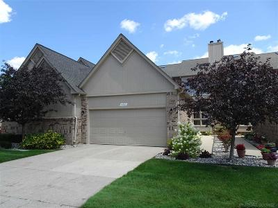 Shelby Twp Condo/Townhouse For Sale: 14930 Stoney Brook