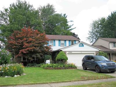 Macomb Single Family Home For Sale: 47624 Valley Forge