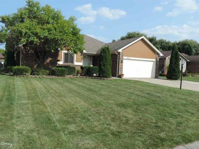 Clinton Township Single Family Home For Sale: 43092 Sinnamon