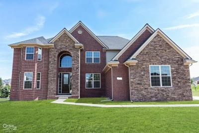 Macomb Single Family Home For Sale: 5909 Lakeview
