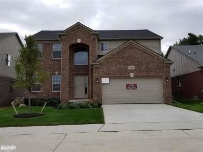 Macomb Single Family Home For Sale: 5820 Valyn Dr