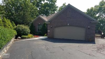 St. Clair Single Family Home For Sale: 5229 S Hillcrest Drive