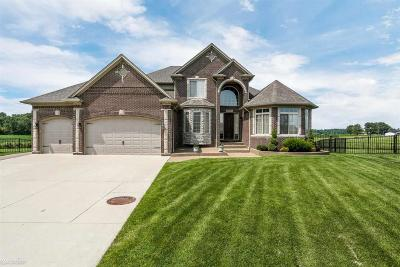 Macomb Single Family Home For Sale: 52567 Melody