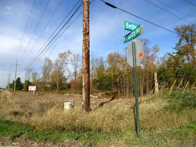 Casco Residential Lots & Land For Sale: Marine City Highway