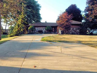 Macomb Single Family Home For Sale: 26669 S River Rd
