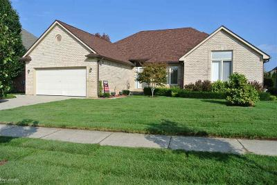 Macomb Single Family Home For Sale: 51608 Battanwood