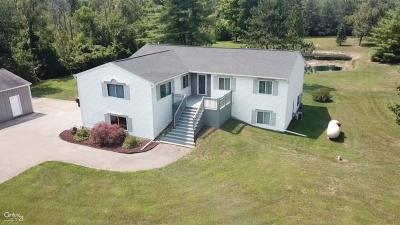 Lapeer Single Family Home For Sale: 3604 Meadow Lane