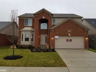 Shelby MI Single Family Home For Sale: $342,900