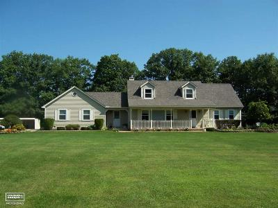 Riley Single Family Home For Sale: 11668 Belle River Rd