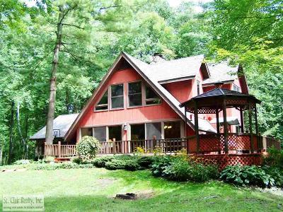 Saint Clair Single Family Home For Sale: 165 Richman