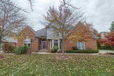 Shelby Twp Single Family Home For Sale: 48010 Vittorio