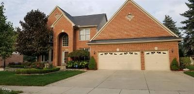 Troy Single Family Home For Sale: 3894 Timbercrest