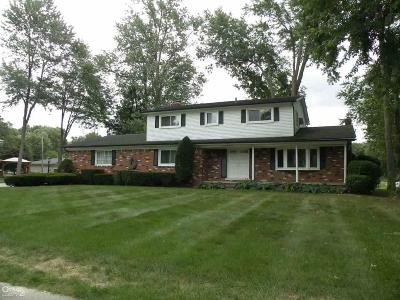 Shelby Twp Single Family Home For Sale: 7024 Chirco Drive