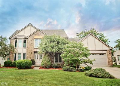 Shelby Twp Single Family Home For Sale: 48471 Lake Land Dr