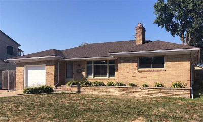 Saint Clair Shores Single Family Home For Sale: 22535 Lange