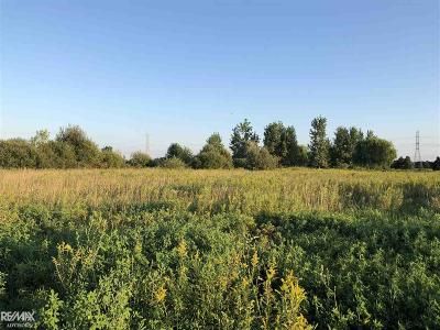 Residential Lots & Land For Sale: 10311 Meskill