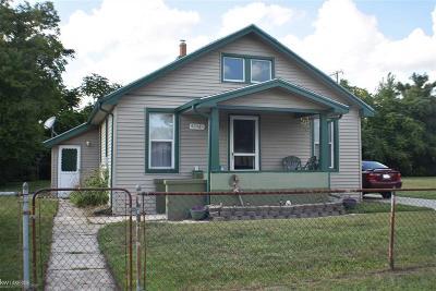 Clinton Township Single Family Home For Sale: 42481 Walnut