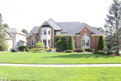 Shelby Twp Single Family Home For Sale: 54068 Birchfield