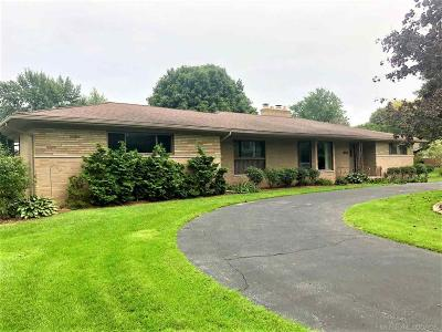 Clinton Township Single Family Home For Sale: 37934 E Horseshoe Dr