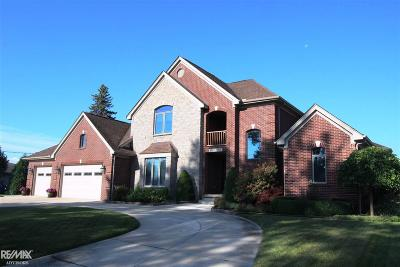 Harrison Twp Single Family Home For Sale: 38137 Mast St.