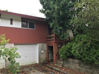 Rochester Single Family Home Pending: 845 Brantford