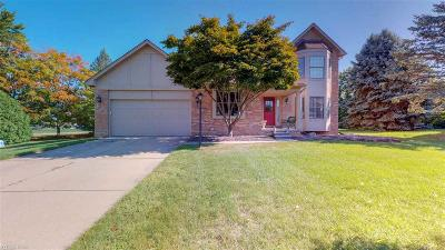 Rochester Hills Single Family Home For Sale: 2014 Oak Leaf