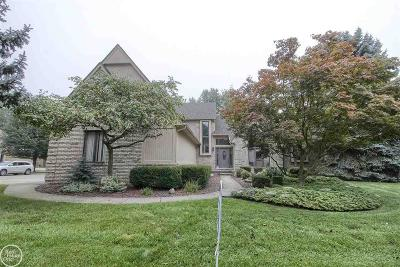 Clinton Township Single Family Home For Sale: 41924 Alden