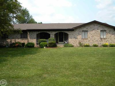 Clinton Township Single Family Home For Sale: 18818 Millar