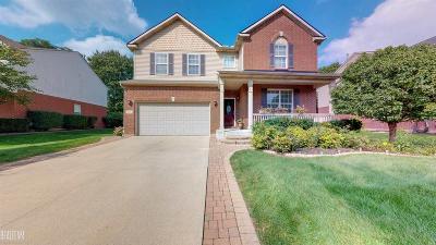 Rochester Hills Single Family Home For Sale: 3226 Everett