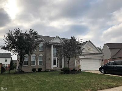 Macomb Single Family Home For Sale: 49681 Helmsley