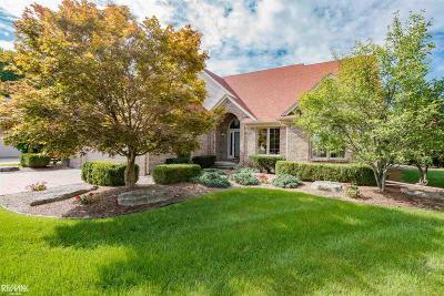 Fraser Single Family Home For Sale: 34223 Rambling Dr