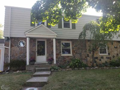 Marine City Single Family Home For Sale: 241 Holland St