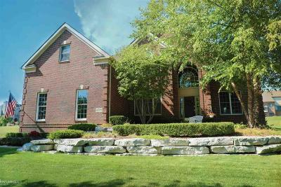 Washington Twp MI Single Family Home For Sale: $475,000