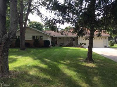 Port Huron Single Family Home For Sale: 3313 E Charmwood Dr