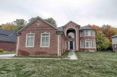 New Baltimore Single Family Home For Sale: 34397 Dante Dr.