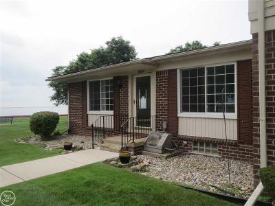 Harrison Twp Condo/Townhouse For Sale: 34760 E Lake Dr.
