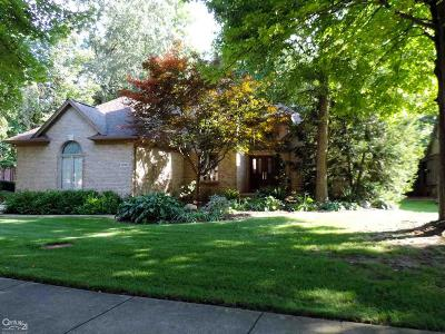 Troy Single Family Home For Sale: 506 Trillium