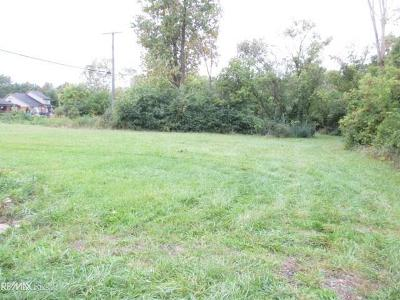 Clinton Township Residential Lots & Land For Sale: Vacant Lot Eaton