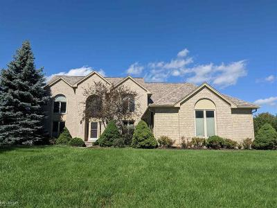 Rochester Hills Single Family Home For Sale: 3612 Aynsley