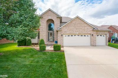 Macomb Single Family Home For Sale: 50561 Nesting Ridge Drive