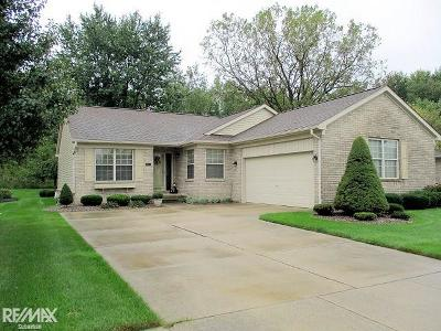 Macomb Twp Condo/Townhouse For Sale: 17914 Cottonwood Dr