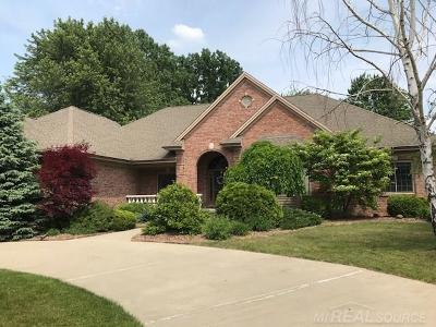 Chesterfield Twp MI Single Family Home For Sale: $449,000